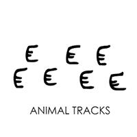 animal-track