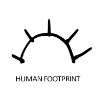 human-footprint
