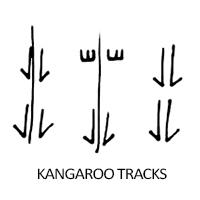 kangaroo-tracks